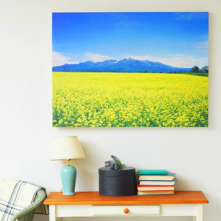 WALL DECOR Canvas Print